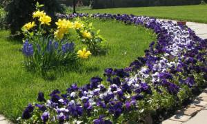 Udělejte si květinové záhony v zemi; nejlepší nápady na design pro květinové záhony v zemi (110 fotografií) | Green-Pages.info