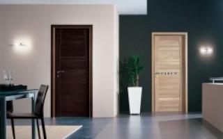 Interiérové dveře Zebrano v interiéru: fotografie, barevné kombinace | Green-Pages.info