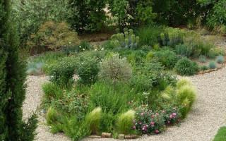 Jaké přírodní kameny jsou vhodné pro vytváření zahradních kompozic