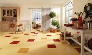 Jak si vybrat správné linoleum do kuchyně — Jak si vybrat linoleum do kuchyně: přehled nátěrů, doporučení | Green-Pages.info