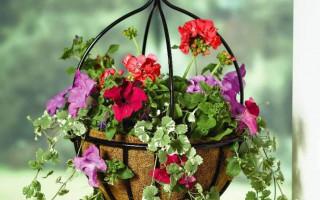 Krásné květináče do-it-yourself; nápady, fotografie, krok za krokem master class   Green-Pages.info