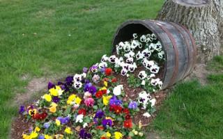 Diy vertikální květinový záhon: nádherné nápady pro zahradu letní chaty