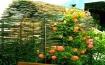 Do-it-yourself wattle pro záhon: fotografie, jak tkát ploty z vinné révy, větvičky, desky, dřevo | Green-Pages.info