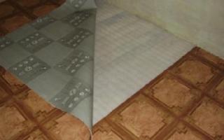 Jak si vybrat linoleum do kuchyně; která možnost je lepší a proč | Green-Pages.info