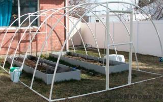 Rozpočtový skleník vyrobený z plastových trubek: mistrovská třída + jednoduché projekty