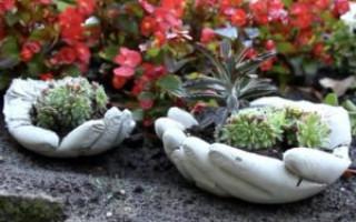Jak si vyrobit konkrétní květinovou postel vlastními rukama: fotografie, fáze, jak malovat | Green-Pages.info