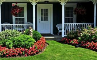 Jaké květiny a keře lze zasadit poblíž domu