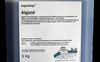 Léčba bazénu: antiseptika pro dezinfekci a lidová léčiva pro vodní květ | Green-Pages.info